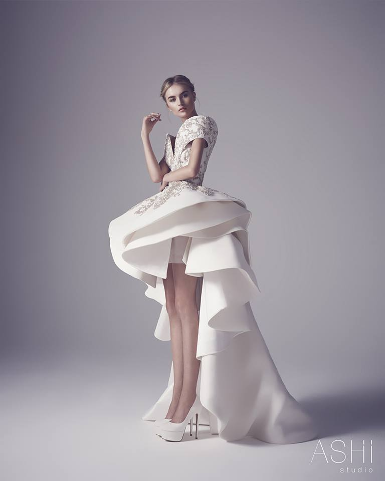 Ashi Studio Couture Spring Summer 2016 Collection (23)